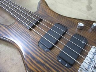 bass110.jpg