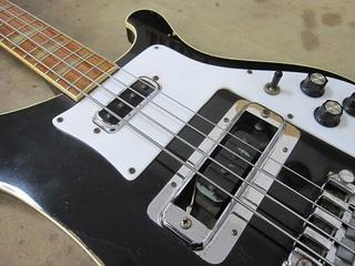 bass116.jpg