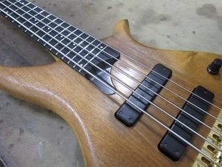 bass131.jpg