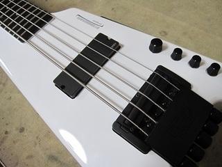 bass93.jpg