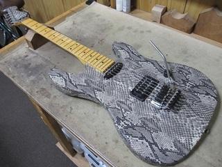 guitar209.jpg
